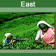 East India Tours Package