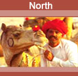 North India Tours Package